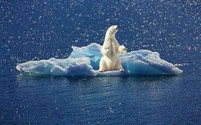 Themadienst over het klimaat
